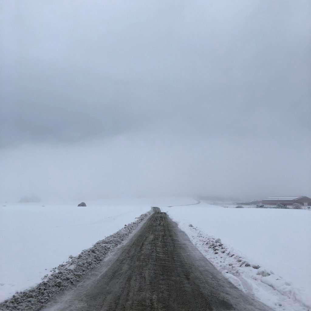 Foggy and gloomy winter road