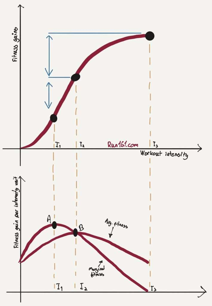 Illustration showing average and marginal fitness as a function of workout intensity