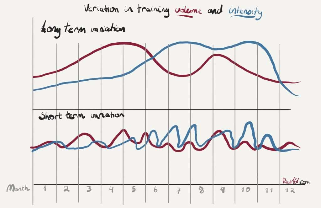 Running Training Periodisation model based on Matwiejew's model for sports periodisation