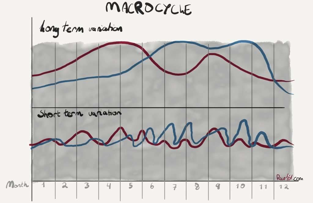Illustration of a training macrocycle